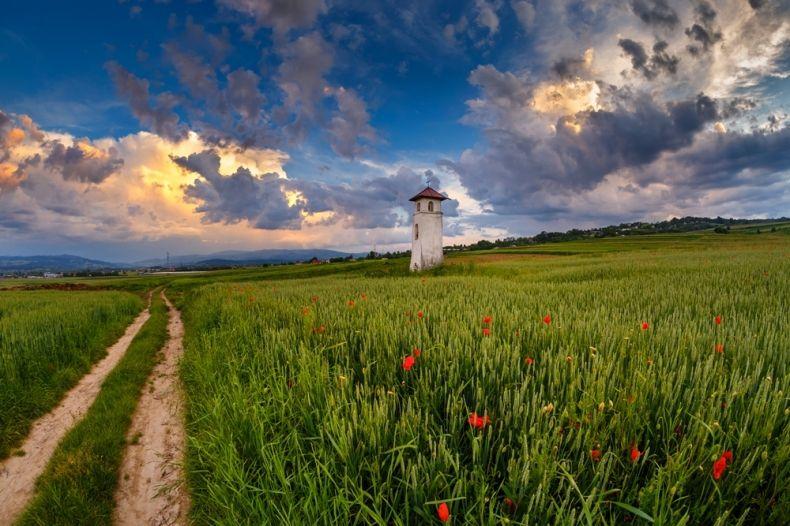 kapliczka w szczerym polu, obok drogi polnej
