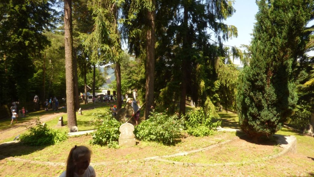 Akcja sprzątania cmentarza wojennego w Kamionce Małej