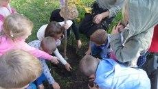 Sadzenie drzewek - Łukowica 2019