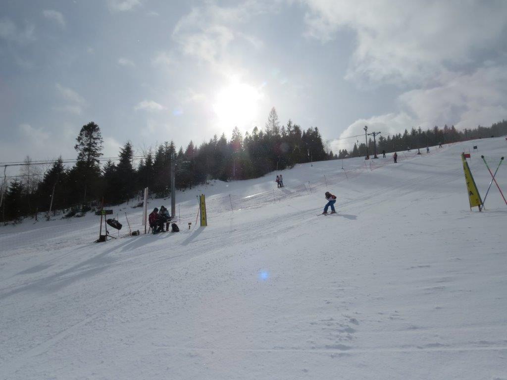 Powiatowe Igrzyska Dzieci w Narciarstwie Alpejskim