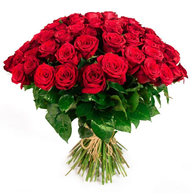 bukiet czerwonych róż na białym tle