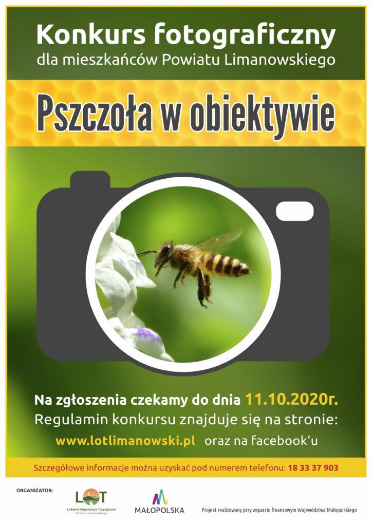 plakat - Pszczoła w obiektywie