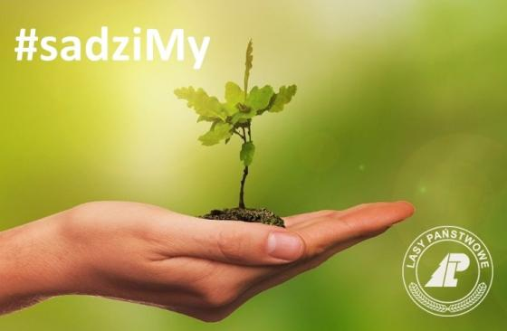 #sadziMy - plakat informujacy owydarzeniu
